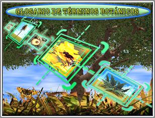 Glosario de Términos Botánicos